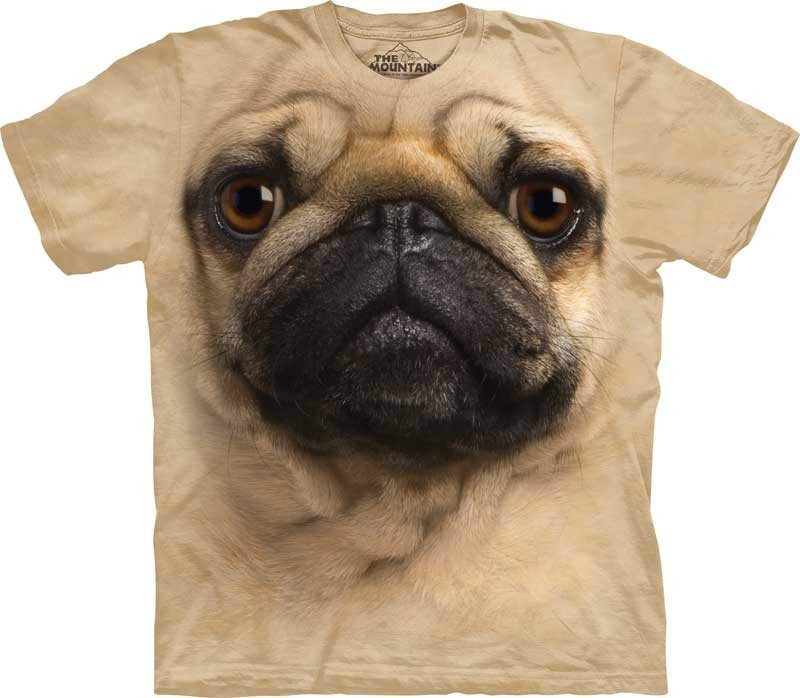 Mountain | Big Face Tee | Pug